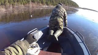 НАКОНЕЦ ТО ВЕСНА Первые дни рыбалки сетями ЩУКА ЛЕЩ ОКУНЬ Один лещ ушел самый большой