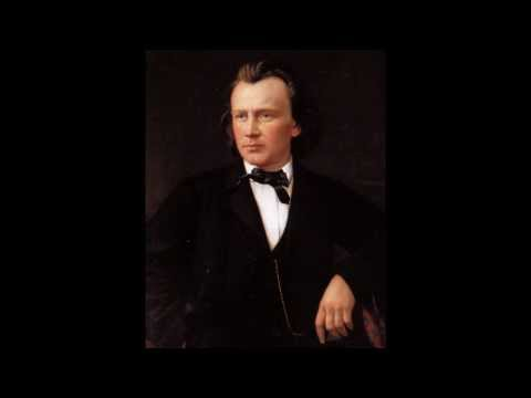 Brahms - Theme and Variations in D minor (arr. from String Sextet, Op. 18) - Stefan Chaplikov