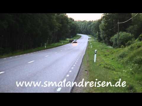Elchsafari in Schweden/Smalånd