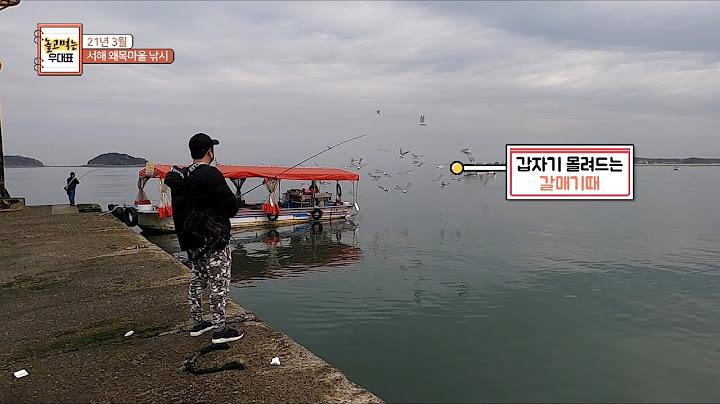 21.3월 서해 왜목항 낚시!! 고기들이 다 얼어 죽었습니다.