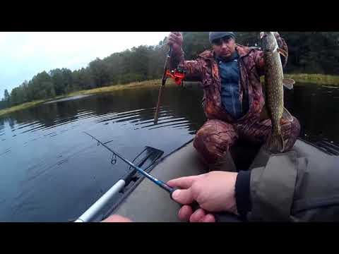 Лов щуки в беларуси на видео