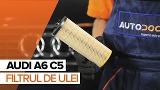 Înlocuire Filtru ulei AUDI A6: manual de intretinere si reparatii