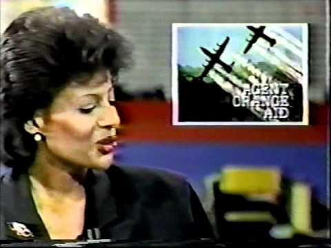 WBBM-TV Chicago - Channel 2 10PM Weekend News (August 10th, 1986)