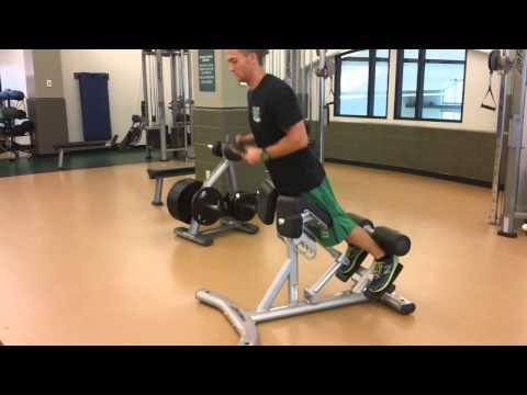 Life Fitness Back Extension Bench