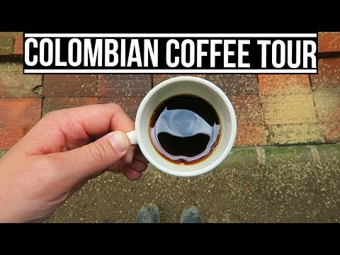 COLOMBIAN COFFEE TOUR   Eileen Aldis