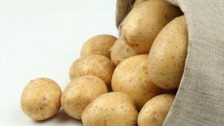 О супер способностях простой картошки не знали