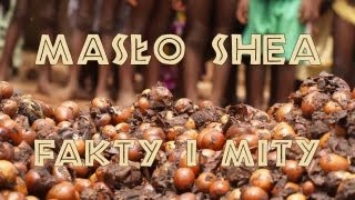 Masło Shea Fakty i Mity - część 2 - Tylko w naturze rosnące? - www.masloshea.com.pl