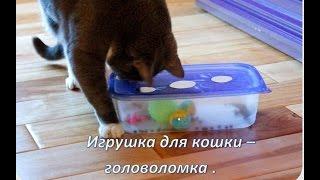 Игрушка для кошек своими руками из ПИЩЕВОГО КОНТЕЙНЕРА / toy for cats with their own hands