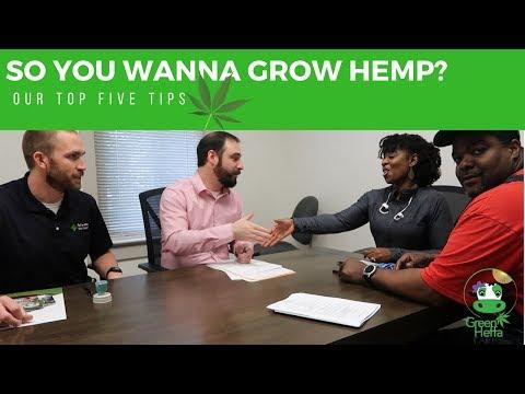 So You Wanna Grow Hemp? Our Top 5 Tips For Beginners