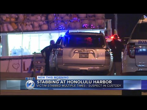 Argument at Honolulu Harbor leads to stabbing; one man in critical condition