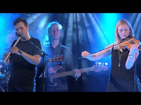 Back to the Roots Festival 2017, Scott Wood Band (SCO)