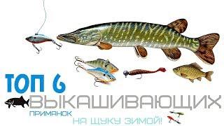 Топ 6 лучших приманок для рыбалки на щуку зимой Самые уловистые наживки и приманки на щуку зимой