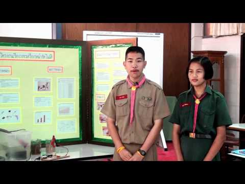 Presentation โครงงาน เครื่องรดน้ำอัตโนมัติ