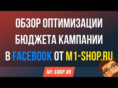Обзор оптимизации бюджета кампании в M1-shop.ru