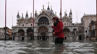 Venice's St Mark's Square turned into swimming pool as floodwater takes over city