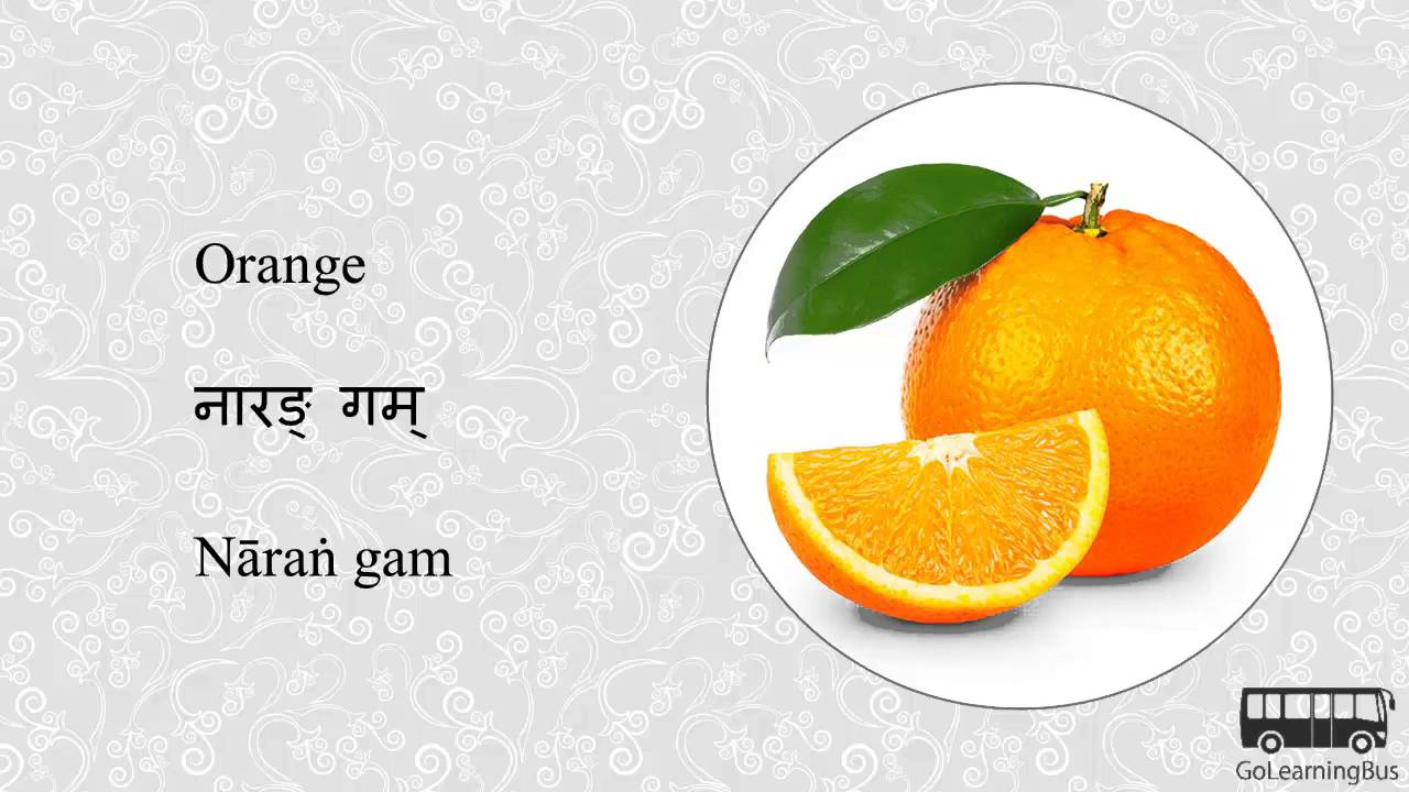 Learn Sanskrit Visual Dictionary - Fruits and Nuts via Videos by  GoLearningBus(3A)