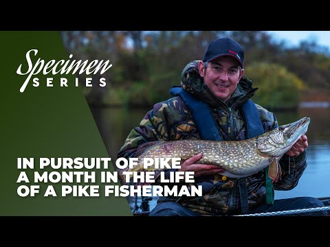 In Pursuit Of Pike - A Month In The Life Of A Pike Fisherman