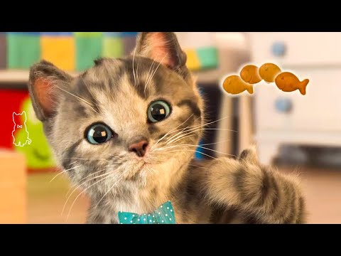 Little Kitten My Favorite Cat  Cute Virtual Pet Simulator 1