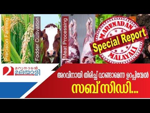 Brahmagiri development society for beef market intervention   Marunadan Malayali