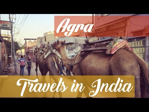 Agra Travel Guide featuring the Taj Mahal and Baby Taj