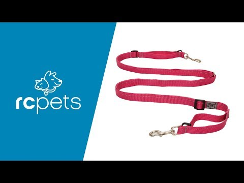 Rc Pet Products How To Use The Primary Active Leash Youtube
