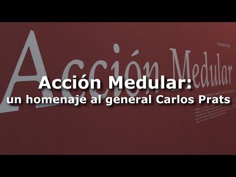 Acción Medular: un homenaje al general Carlos Prats