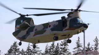 2017/4/2の航空自衛隊主催「熊谷基地さくら祭」で地上展示されていた入...