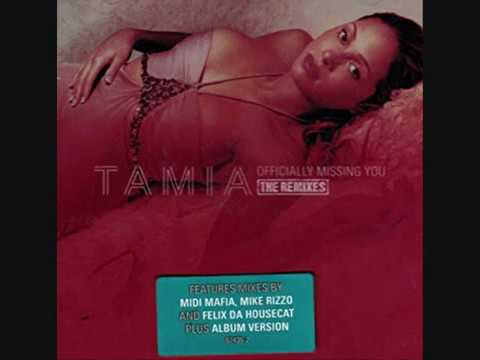 Tamia - Officially Missing You (REMIX)