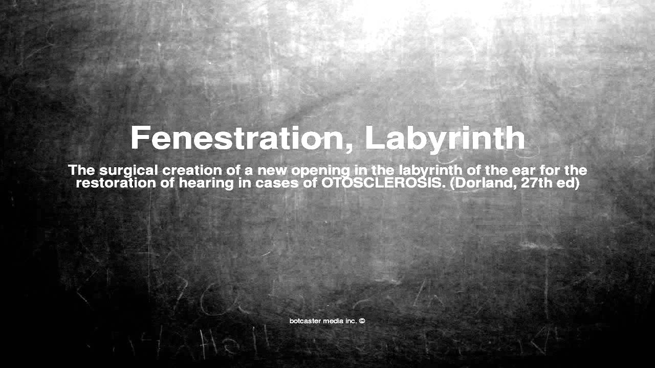 Medical vocabulary what does fenestration labyrinth mean youtube medical vocabulary what does fenestration labyrinth mean buycottarizona Image collections