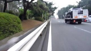 南栄駅・高師駅界隈ジョギングコースその1【自転車で実測】