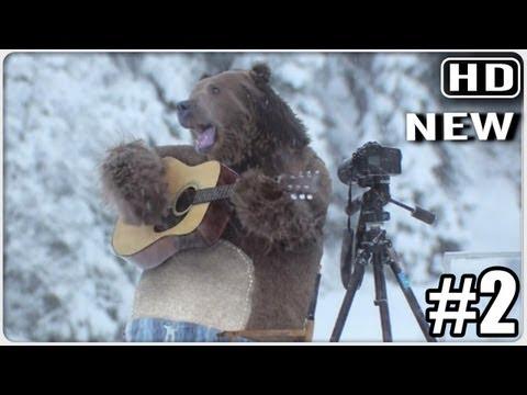 Huge Bear Surprises The Film Crew At Samsung EcoBubble Washing Machine Shoot