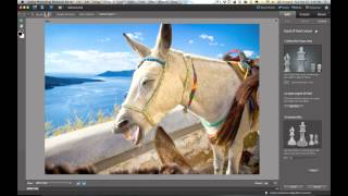 Adding a Shallow Depth of Field Effect in Photoshop Elements