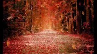 Christian Rohde - Herbstzeit
