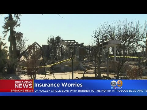 fire-insurance-101:-answers-for-homeowners-dealing-with-insurance-claims