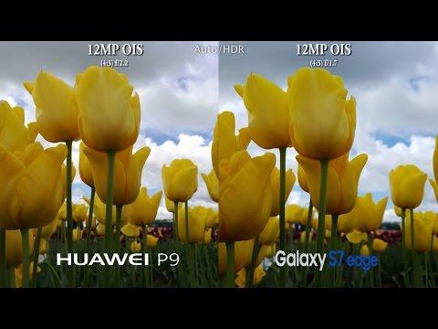Huawei P9 Vs Samsung Galaxy S7 Edge - Camera Test Comparison Review!