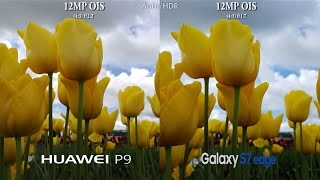 Huawei P9 vs Samsung Galaxy S7 Edge - Camera Test Comparison Review!