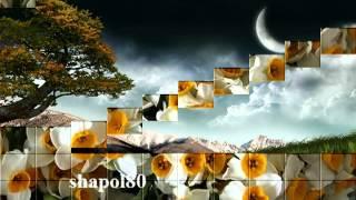 kurdish music adnan karim waku nay