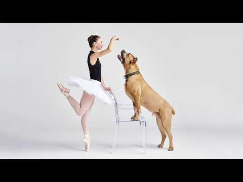 Dancers and Dogs, Behind the Scenes Photoshoot - Part 1
