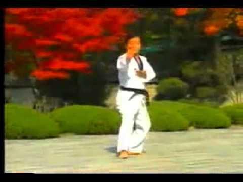 taekwondo poomse 4