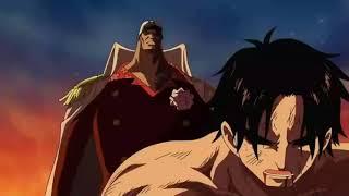 Chó đỏ Akainu suýt chết với Garp