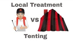 Termite Local Treatment vs Fumigation: Choosing the Right Termite Treatment for Your Home