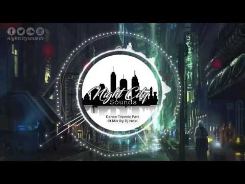Dance Tripmix 81 By DJ NOEL ( Enigmatica1850 Production ) [ NCS Release ] Night City Sounds