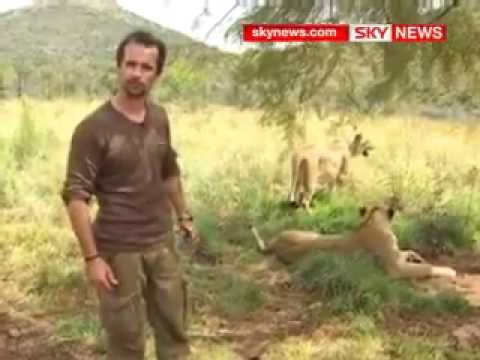 Kevin Richardson, l'ami des lions