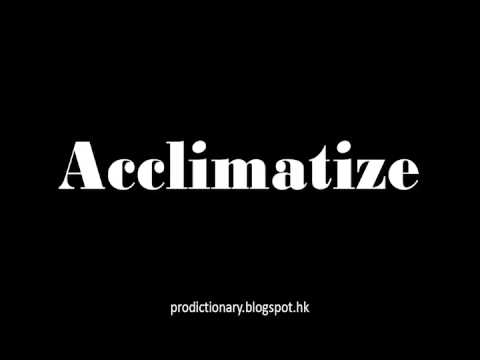 How to Pronounce Acclimatize|Pro - Dictionary
