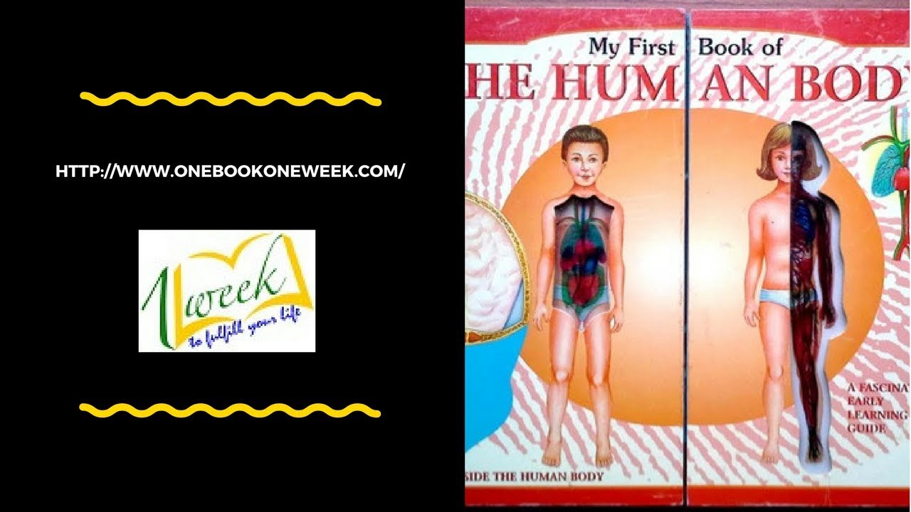 My first book of the human body - YouTube