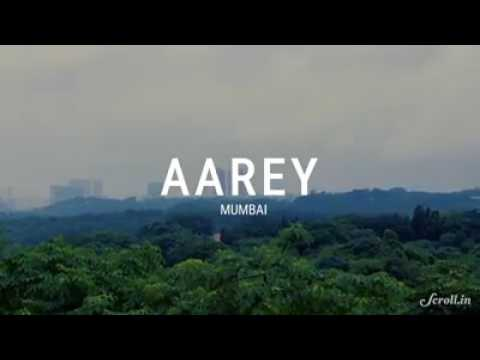 Save Aarey for betterment of tomorrow