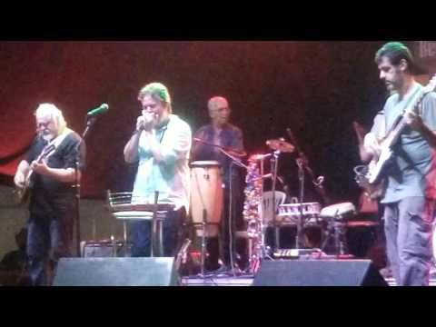 Jefferson Gonçalves Kleber Dias e Banda -  Just Your Fool (Little Walter)