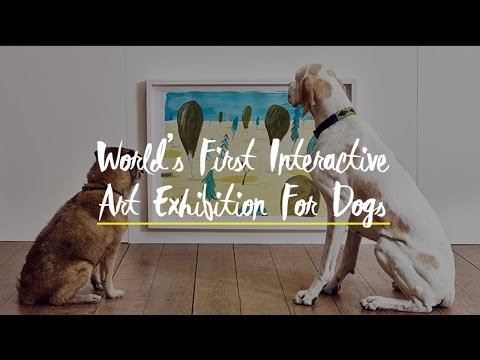 WATCH: World's First Interactive Art Exhibition For Dogs