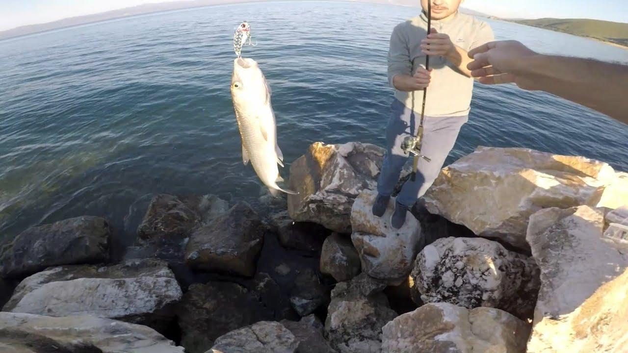 Ufak bir değişiklik yaptığım Vibrasyon Yem Harikalar Yarattı Bu Balıklar Çıldırmış Vol 1