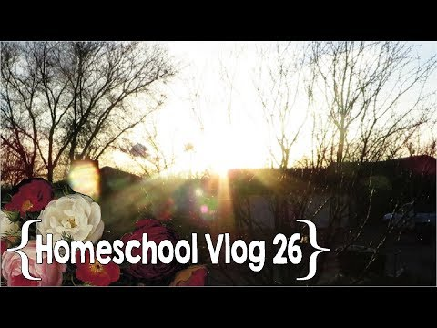 The Sun Sets on Another Week with No Baby ║ Hang Out with This Homeschool Mom of 8 │ School Week 26